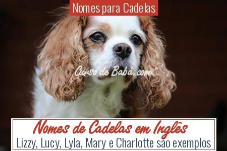 Nomes para Cadelas - Nomes de Cadelas em Inglês